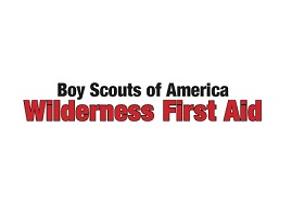 Wilderness First Aid Hybrid Course with First Aid/CPR/AED Hybrid option @ Camp Reeves