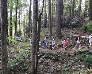 Scout Me In!  Nature Hike & Scouting Info Session @ Johnston Mill Nature Preserve